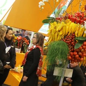 fruit logistica 1